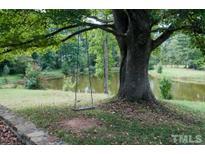 View 98 Harrison Pond Dr Pittsboro NC