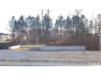 View 1202 Caspian Dr Knightdale NC